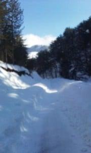 karla kaplı yollar